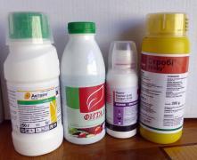 Актара инсектицид для сада и огорода