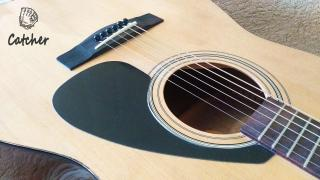 New acoustic guitar Yamaha F-310 + cover as gift